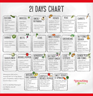 21 days chart